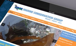 Looe Marine Conservation website